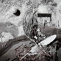 Secrets Of The Beehive (Vinyl)
