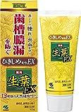 生葉EX(しょうようEX) 歯槽膿漏を防ぐ 薬用ハミガキ ハーブミント味 100g (リーフレット付き)
