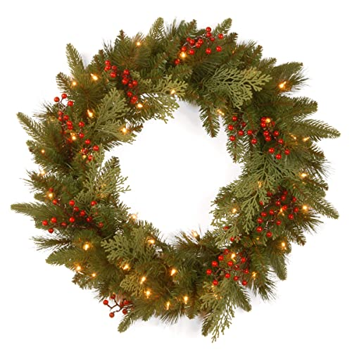 National Tree 24 Inch Feel Real Classical Collection Wreath with 8 Red  Berries, 8 Cedar - Artificial Christmas Wreaths With Lights: Amazon.com