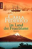 Im Land der Feuerblume: Roman (Die Chile-Trilogie 1) (German Edition)