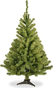 National Tree Company Artificial Christmas Tree | Includes Stand | Kincaid Spruce - 3 ft