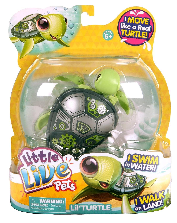 Warning turtles amp tortoises inc - Warning Turtles Amp Tortoises Inc 44
