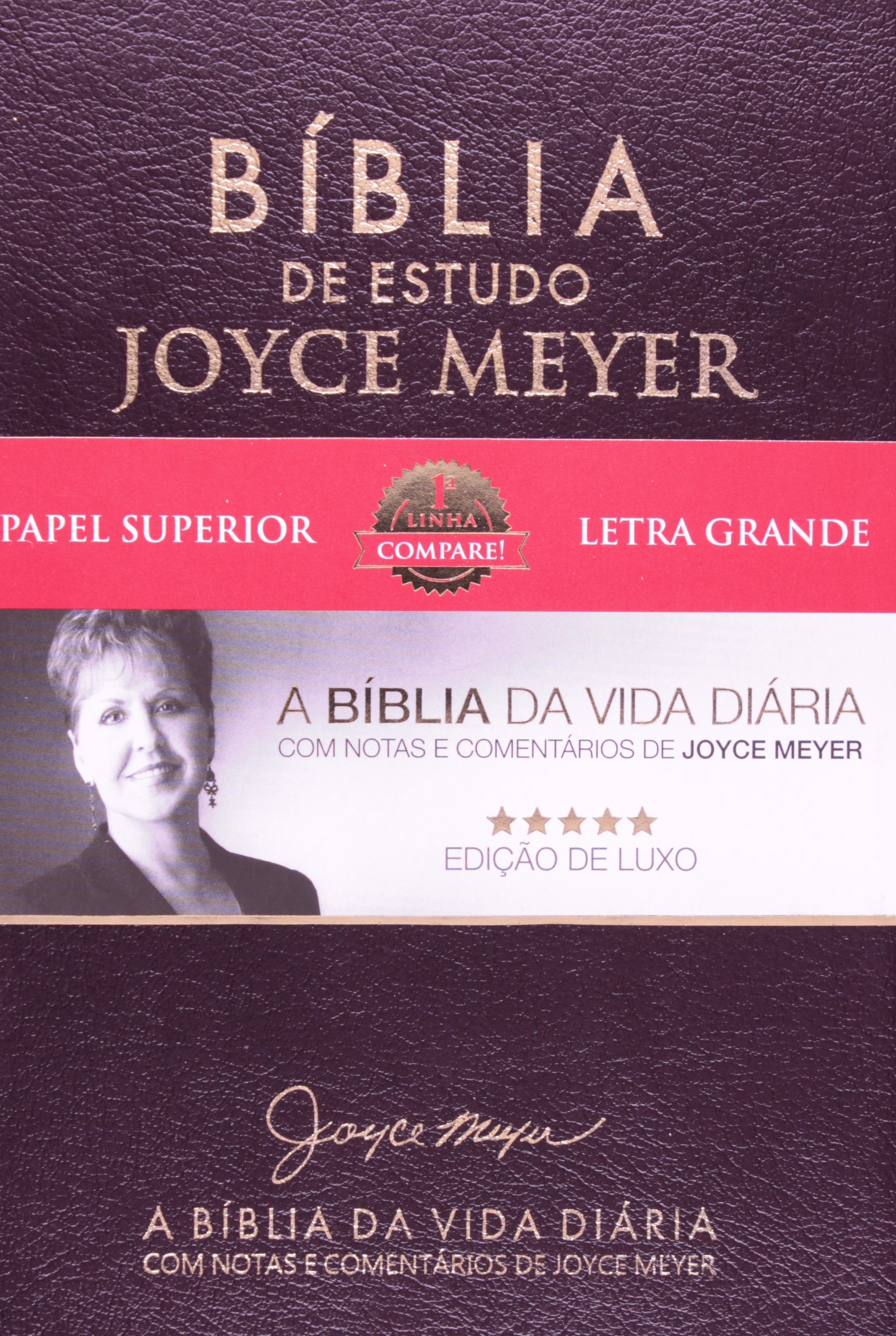 livros gratis de joyce meyer
