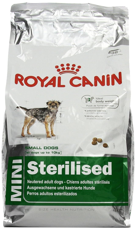 Royal Canin Croquettes pour chien Weight-control pour petit chien Croquettes 4kg 6631114