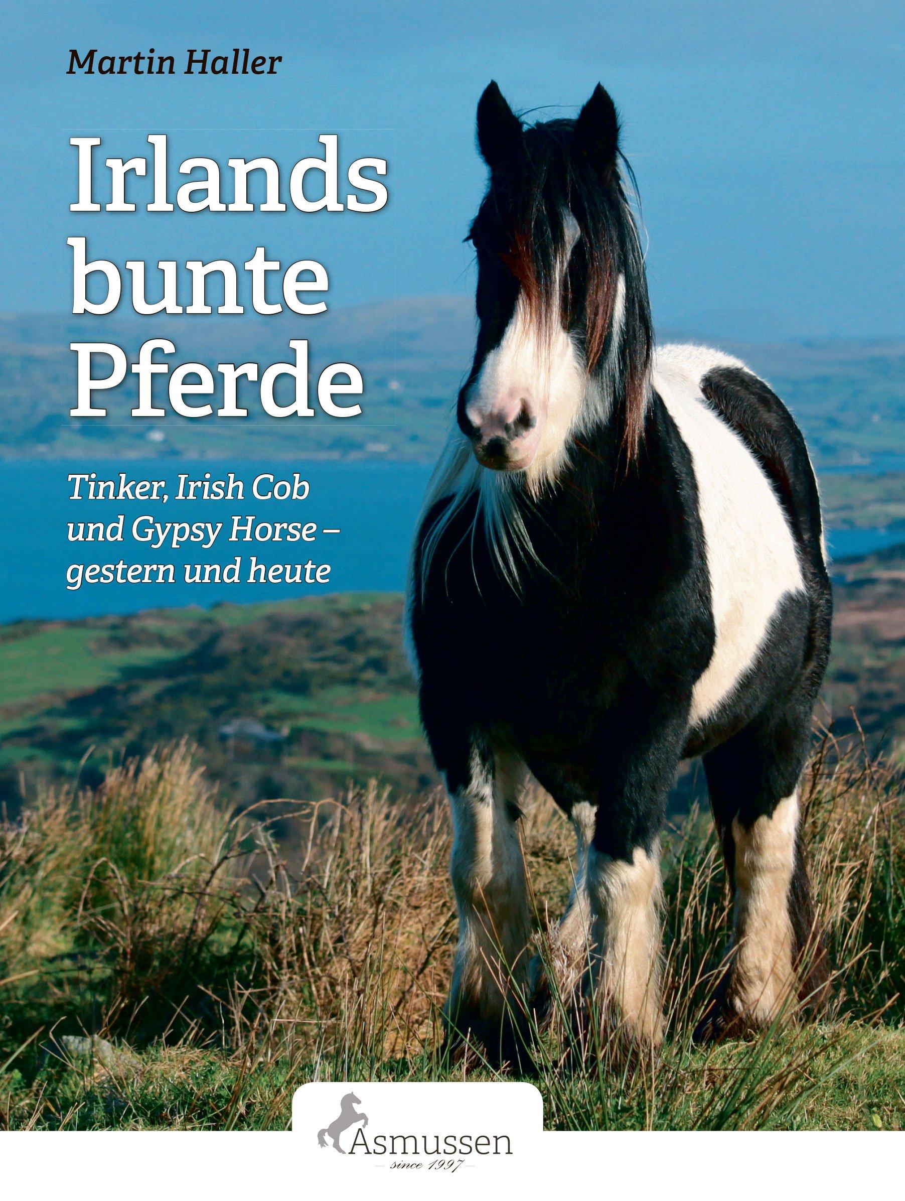 Irlands bunte Pferde: Tinker, Irish Cob, Gypsy Horse - gestern und heute