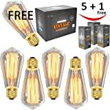 Vintage Edison Light Bulbs (6 Pack), 60W, ST64, E26, Squirrel Cage, Dimmable, Clear Glass, Industrial Vintage Incandescent Bulbs