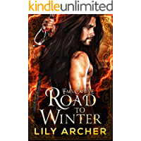 Road to Winter (Fae's Captive Book 2)