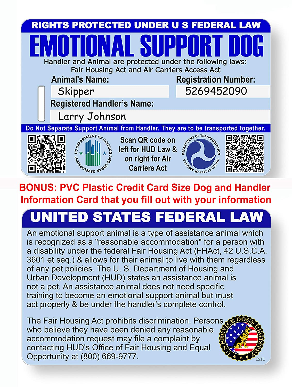 Amazon.com: Juego Oficial de 2 Certificados de Perro de ...