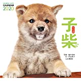 カレンダー2020 子柴 こしば <卓上> (ヤマケイカレンダー2020)