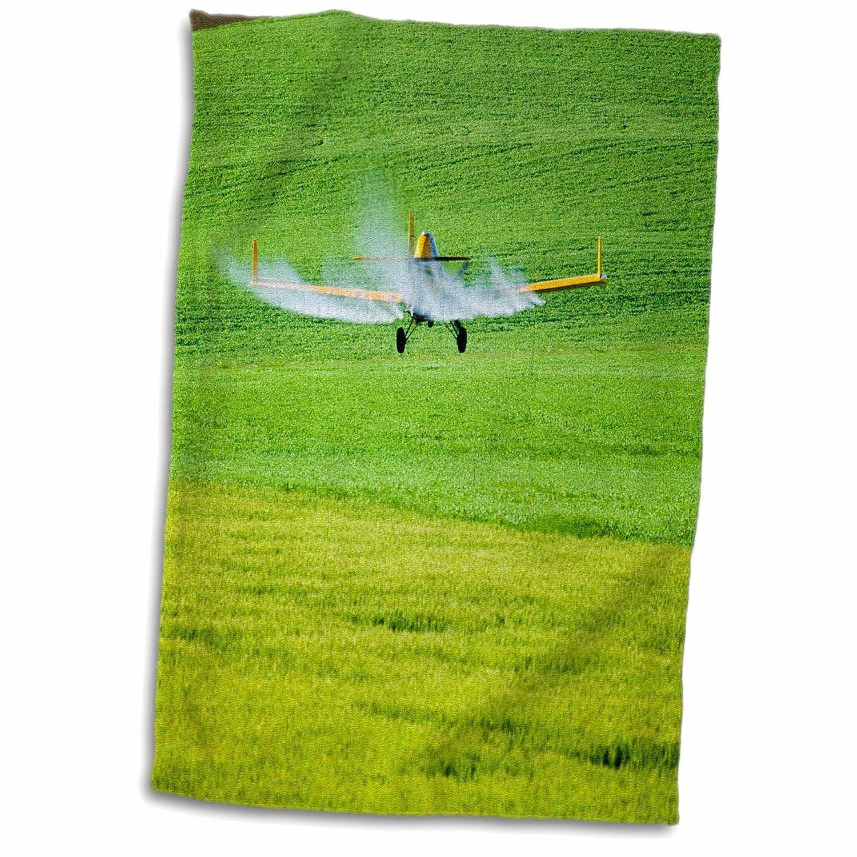 3dRose Mallard Hen and Ducklings in Madison, Wisconsin-US50 DFR0033-David R. Frazier Towel 15\' x 22\'