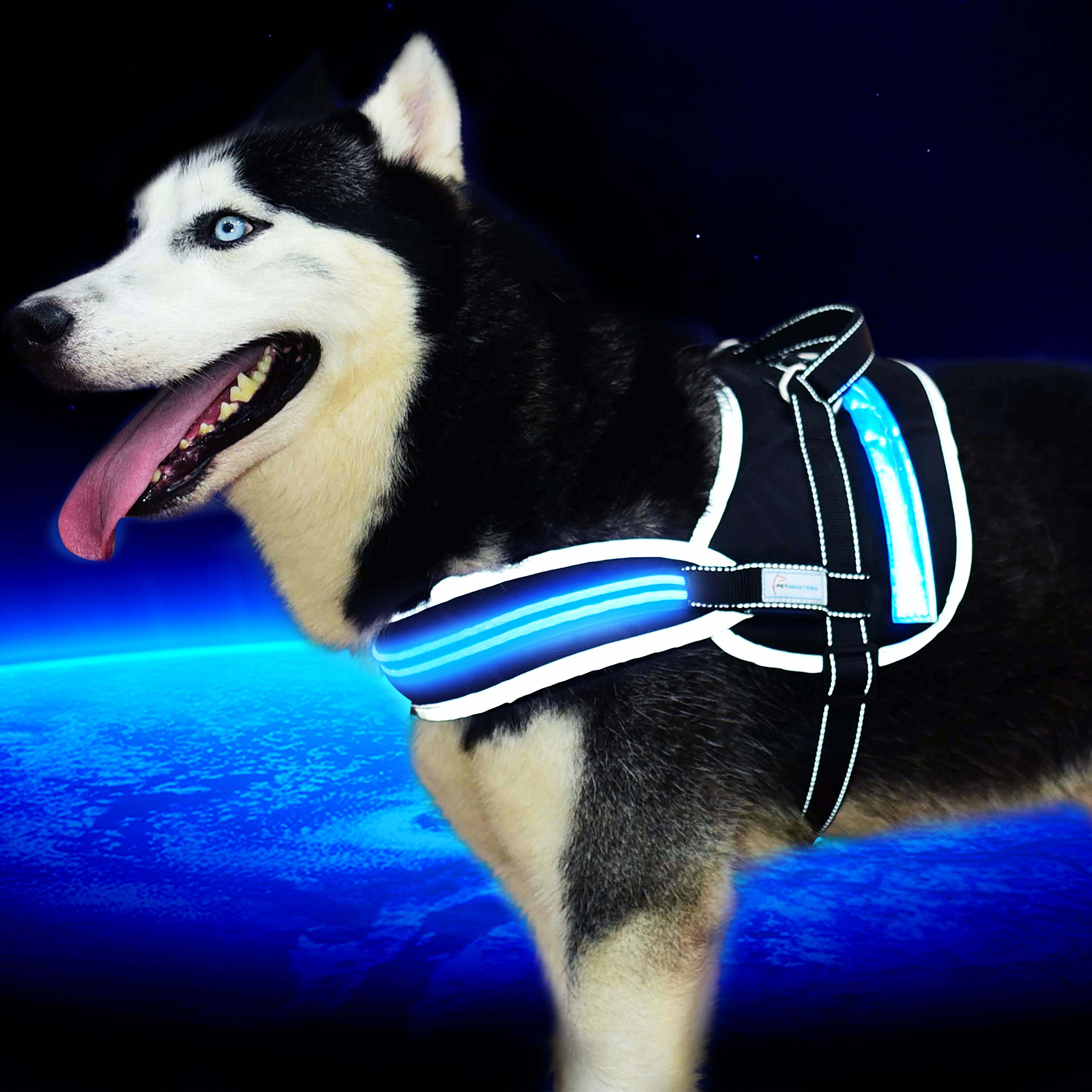 """[Pet Industries] Reflective LED Dog Harness -USB Rechargeable [Premium Edition] (Available in 5 sizes) (Large (Girth: 24 – 30""""), Electric Blue)"""