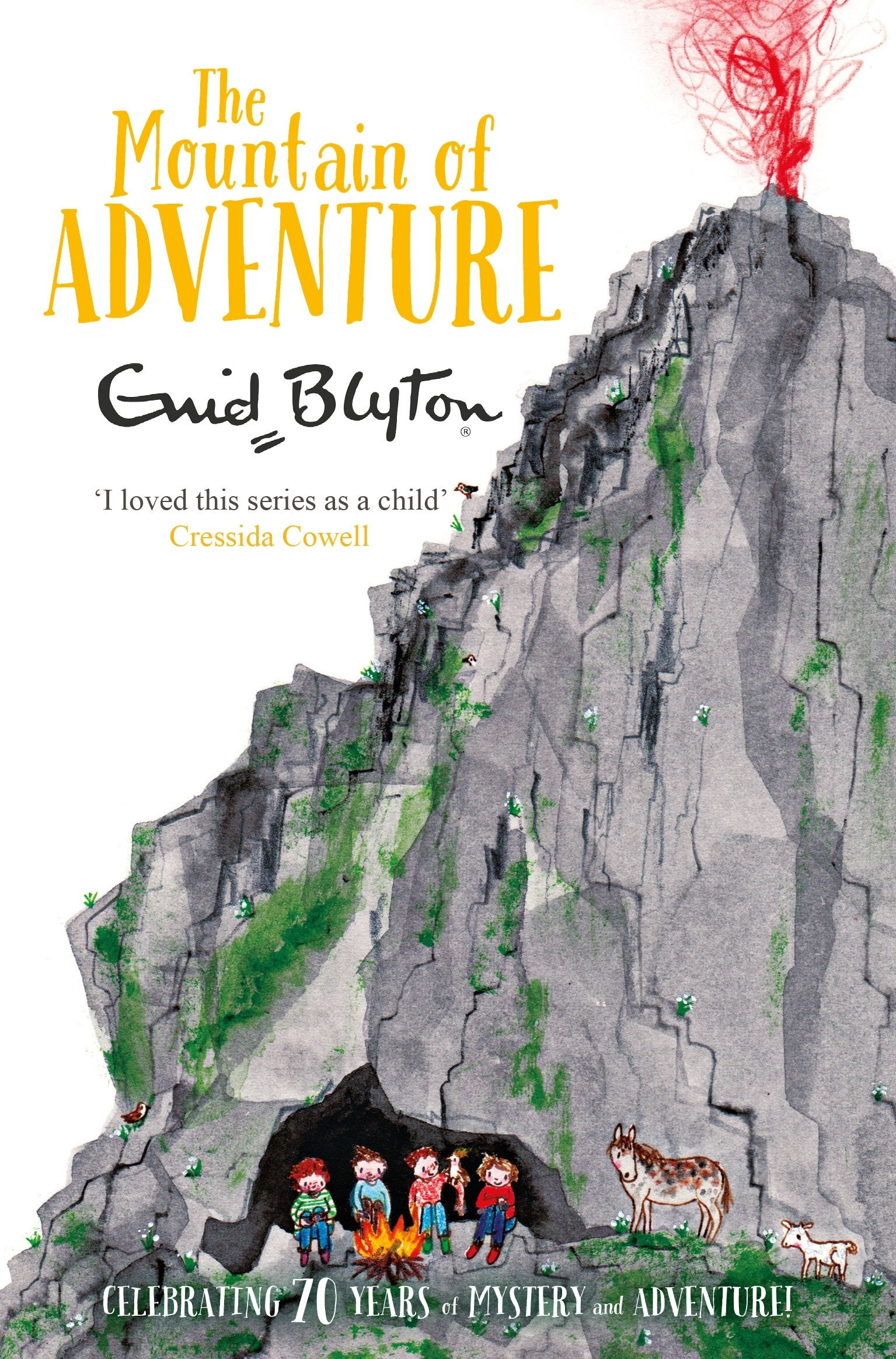 The Mountain of Adventure (The Adventure Series, Band 5)