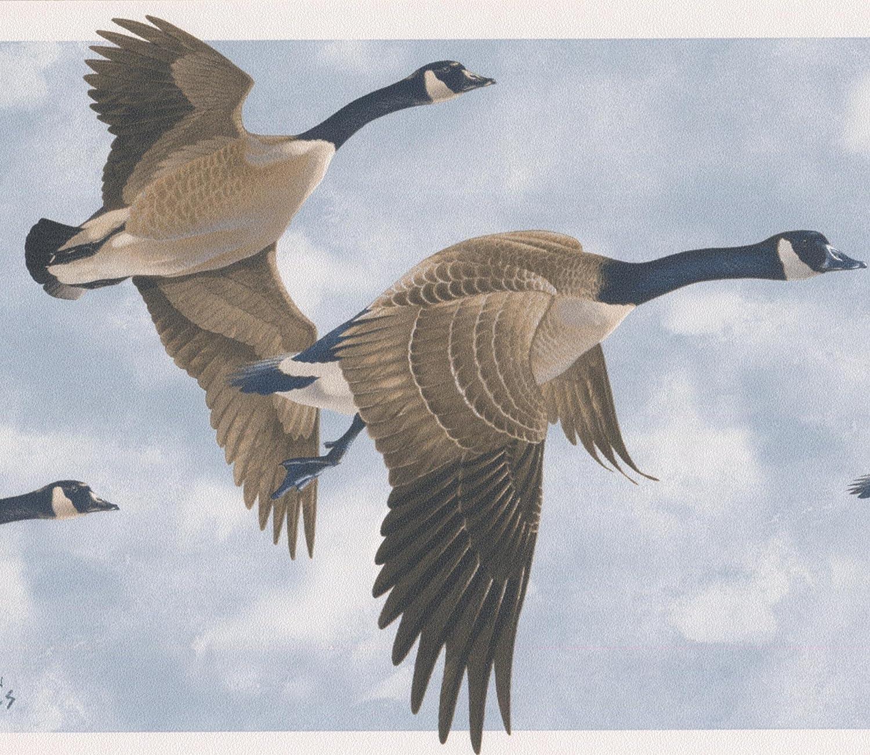 Flying Wood Ducks Wallpaper Border Wallpaper Border