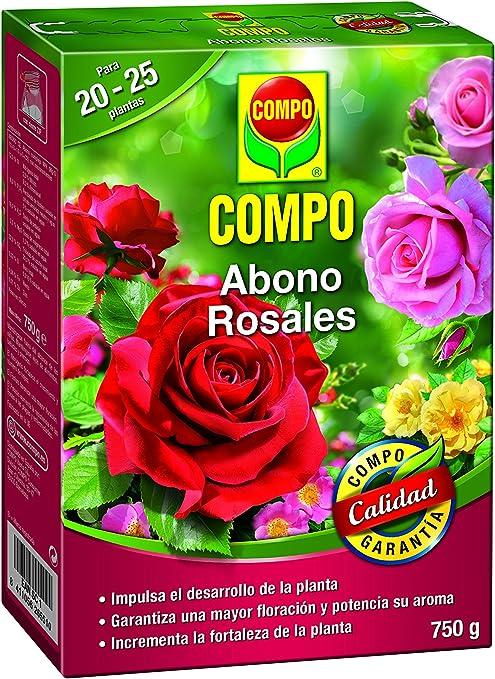 COMPO Abono para rosales Apto también para otras plantas de flor, Envase estanco, Granulado, Para 20-25 plantas, 750 g, 2655102011: Amazon.es: Jardín