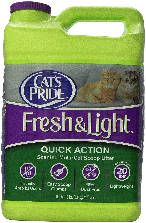 Cats Won T Use World S Best Cat Litter