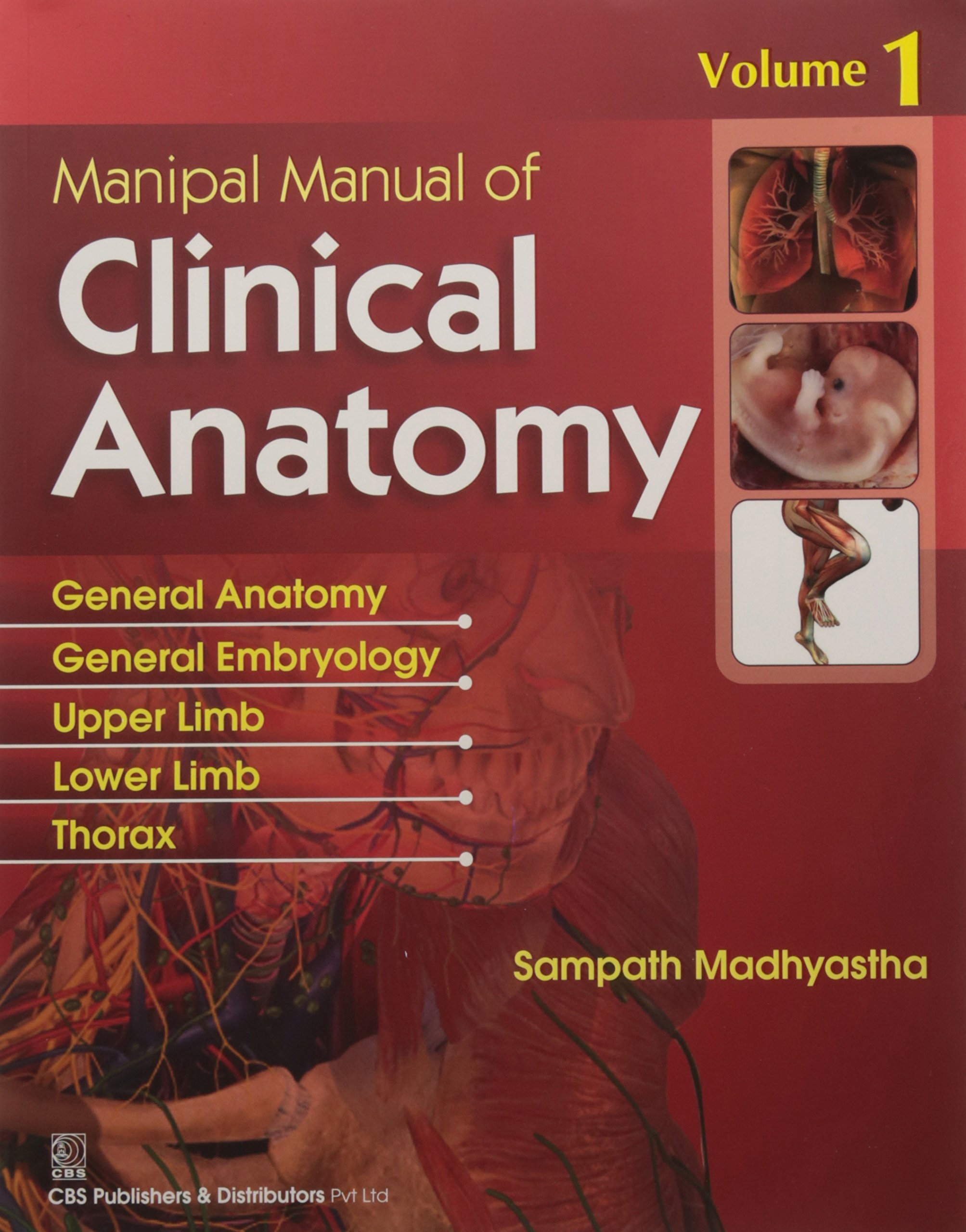 Amazon.in: Buy Manipal Manual of Clinical Anatomy V1 Book Online at Low  Prices in India | Manipal Manual of Clinical Anatomy V1 Reviews & Ratings