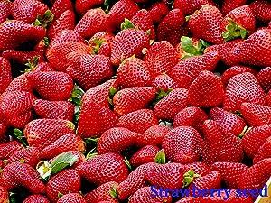 200PCS/Bag Organic Strawberry Seed Red Strawberry Seeds Non-GMO Bonsai Home Garden Pot Plant Organic Fruit Seed