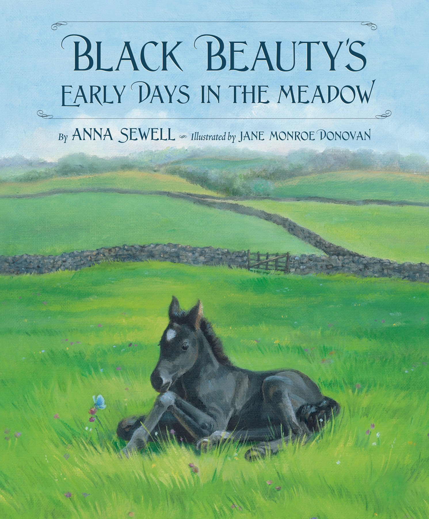 Read Online Black Beauty's Early Days in the Meadow (Classic Picture Books) pdf