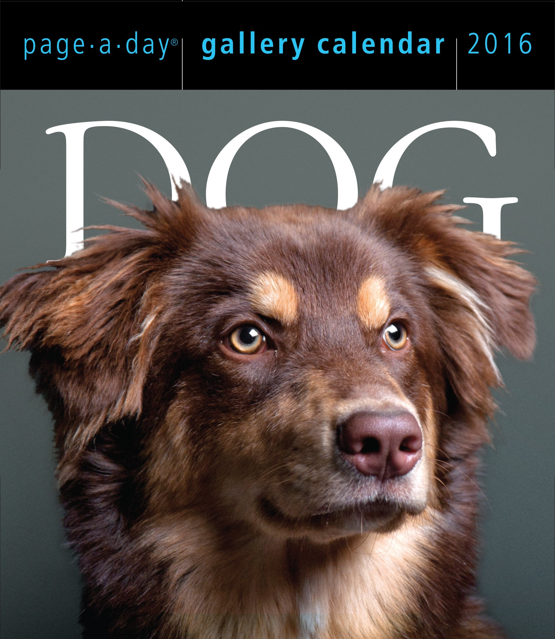 dog page a day gallery calendar 2016 workman publishing