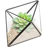 Modern Diamond Design Clear Faceted Succulent Air Plant Planter Box Pot / Keepsake Display Bowl - MyGift