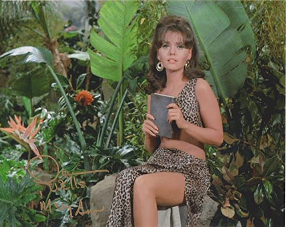 Dawn Wells Gilligan's Island #19 Original Autographed 8X10 Photo at  Amazon's Entertainment Collectibles Store