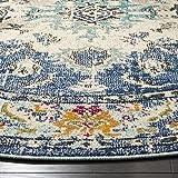 Safavieh Monaco Collection MNC243N Bohemian Chic