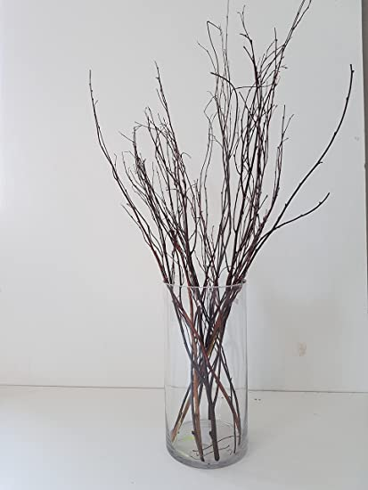 Amazon Tall Birch Branches For Vases Decorative Branches For
