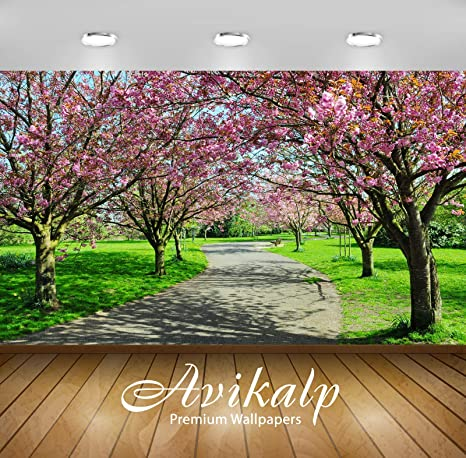 Buy Avikalp Awi3374 Pink Flowers Trees Road Beautiful Nature