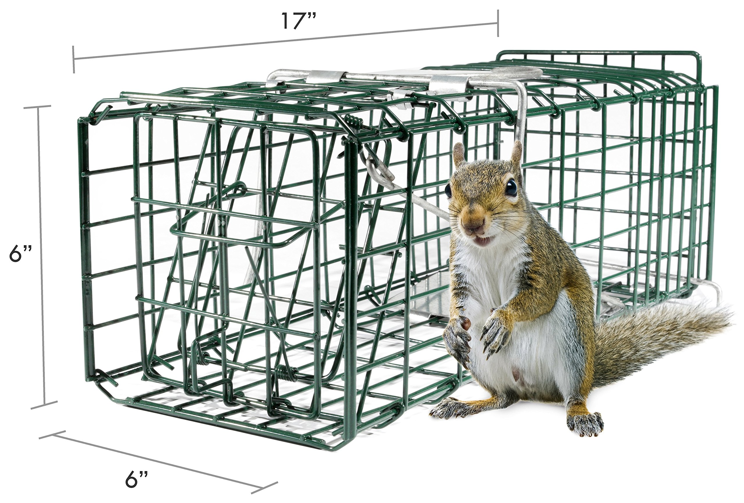 Parker 8 Live Animal Trap (17'' X 6'' X 6'') Catch & Release Rodent Cage - Highly Efficient Professional Humane Solution for Rabbit, Squirrel, Mole, Gopher, Skunk - Steel