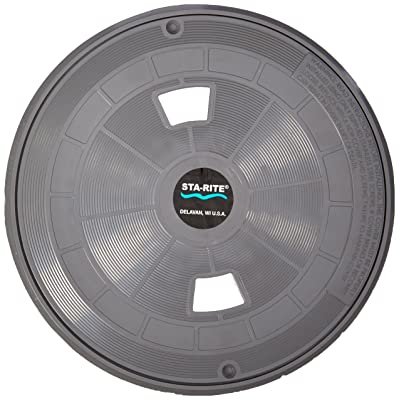 Pentair 08650-0169C Gray Lid and Collar Replacement Sta-Rite Pool/Spa Skimmer: Garden & Outdoor