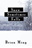 Snow Sometimes Falls: A Christmas Novel
