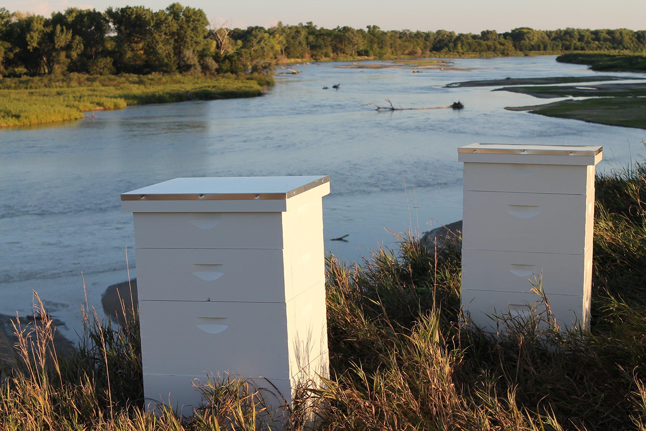 Raw Honey Pure Natural Nebraska Honey One 2lb Jar by Prairie River Honey Farm (Image #9)