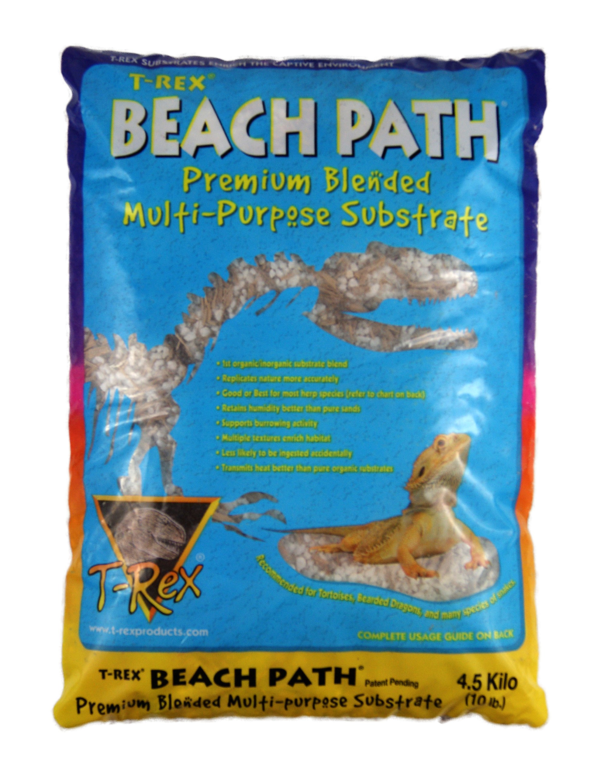 T-Rex Beach Path Substrate