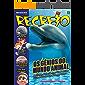 Revista Recreio - Edição 936