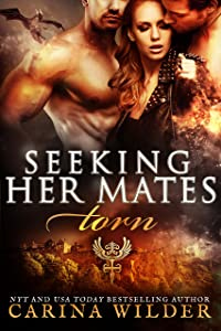 Torn: A Dragon Shifter BBW Serial (Seeking Her Mates Book 1)