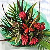 Striking Beauty Tropical Fresh Flower Bouquet – Exotic Flowers Delivered FREE in a 1hr TimeSlot - Next Day UK Delivery Avail 7 Days a Week - Unusual Gift Arrangement of Red, Orange & Yellow Real Cut Flowers