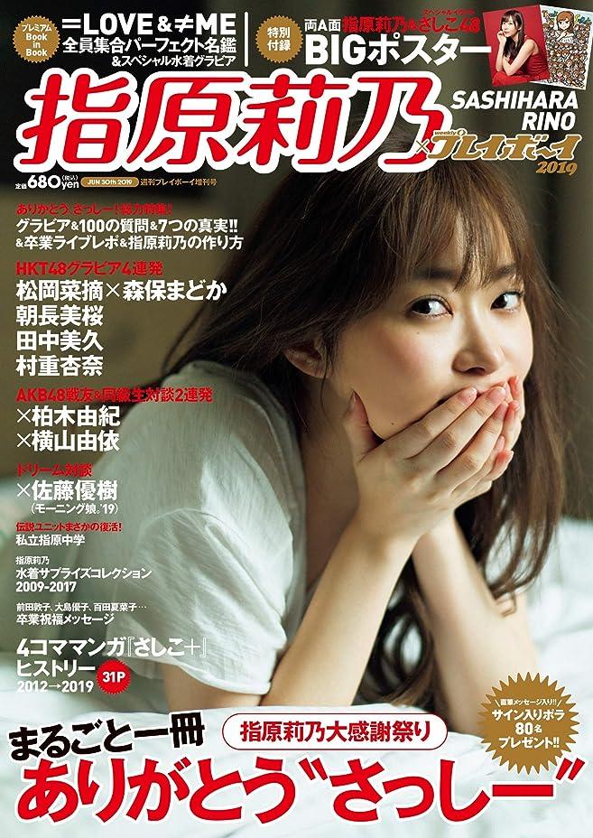 クロス豆結び目電撃G's magazine 2019年7月号増刊 2019 SUMMER SPECIAL 号外 ラブライブ!総合マガジンスタート!応援スペシャル号