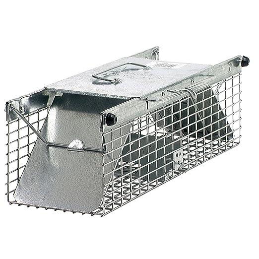 Havahart - Trampa Jaula 1025 2-puertas para ardillas y ratas ...