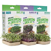 Deals on Back To The Roots Plants and Seeds On Sale from $7.25