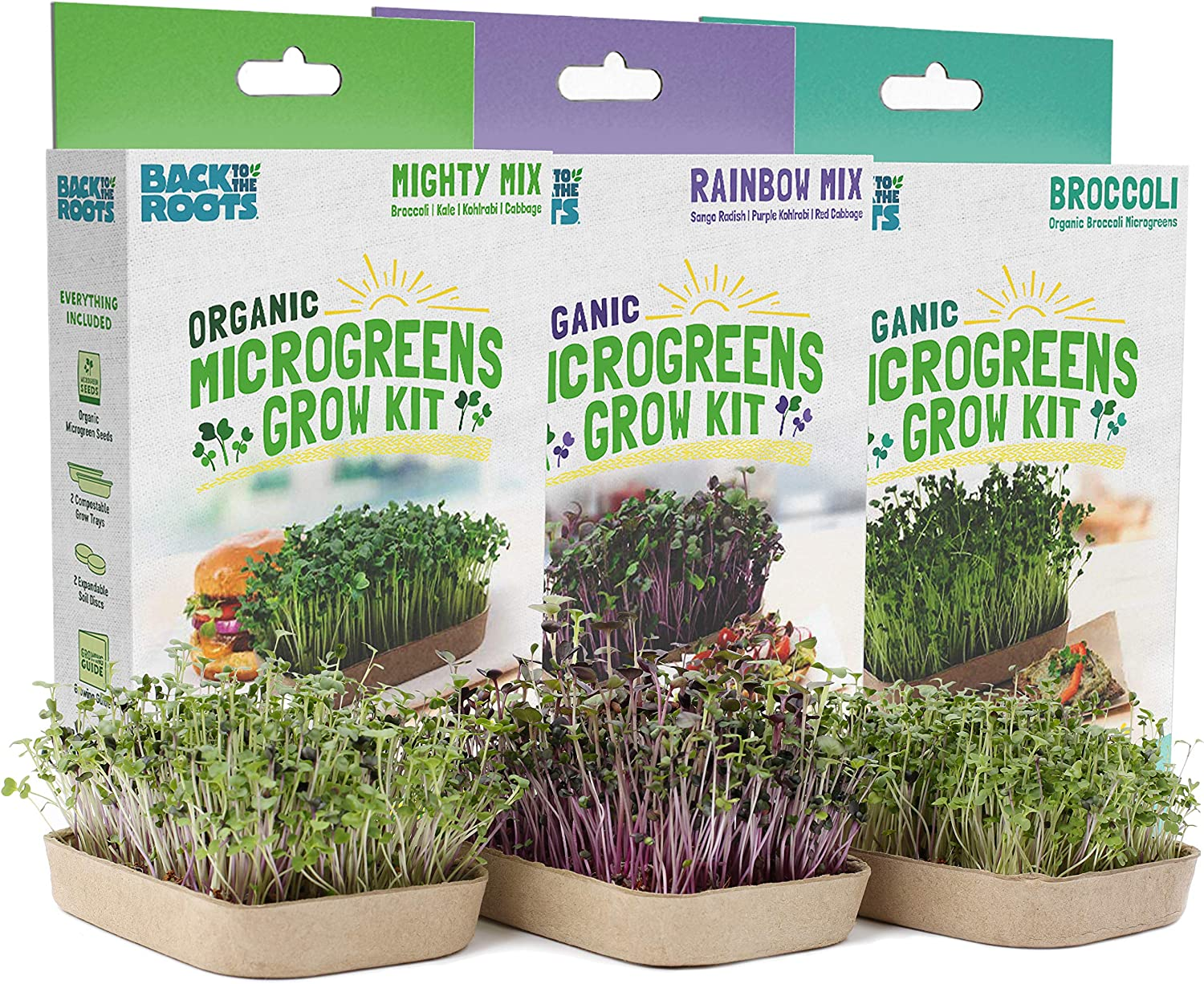 Back to the Roots 50041 DIY 6-Grow Variety Pack Organic Microgreens Kit, Indoor Gardening Starter Set
