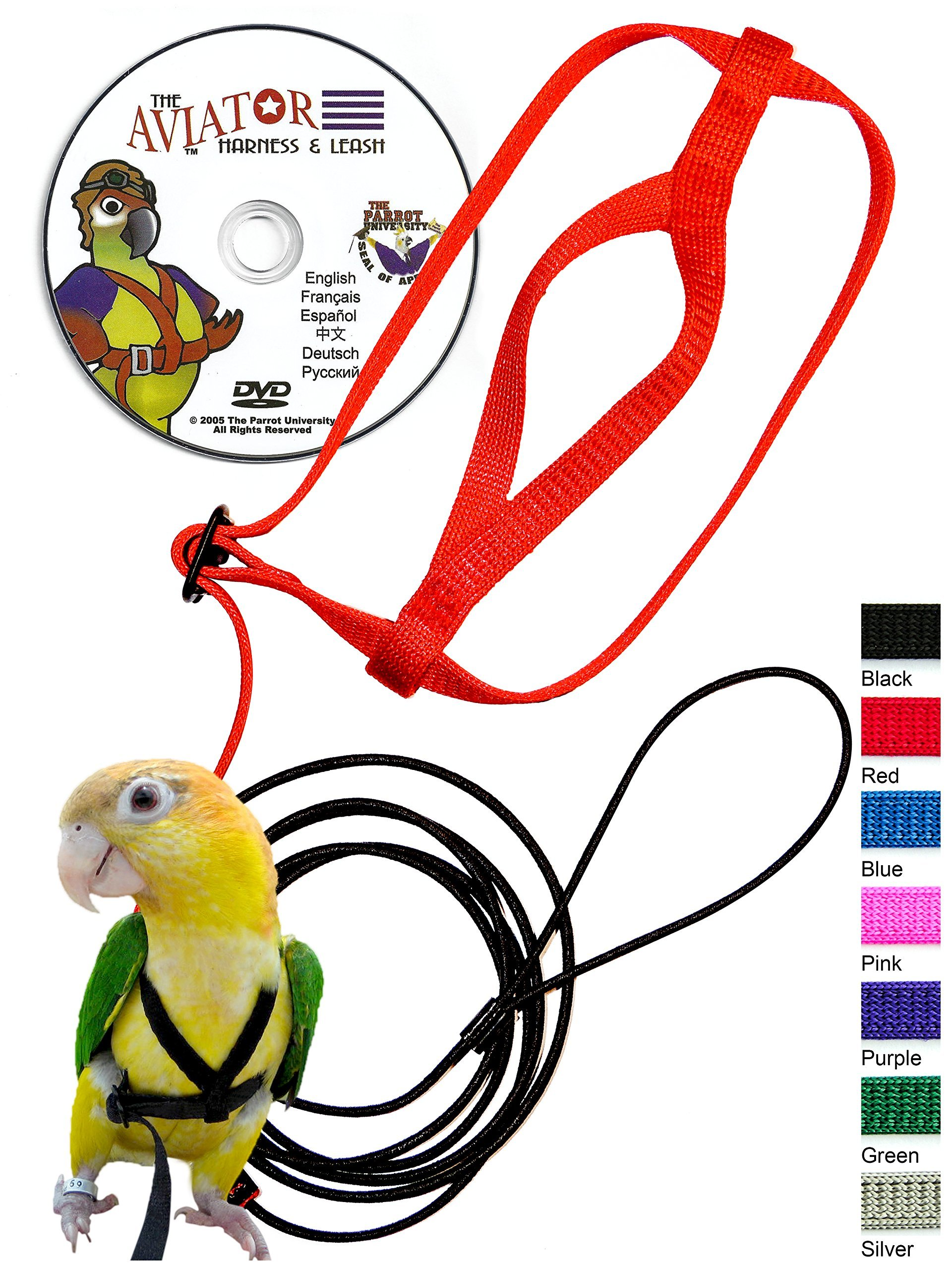 The AVIATOR Pet Bird Harness and Leash: X-Small Black by The AVIATOR