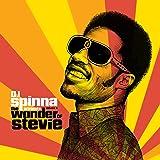DJ Spinna presents the Wonder of Stevie - Volume 3