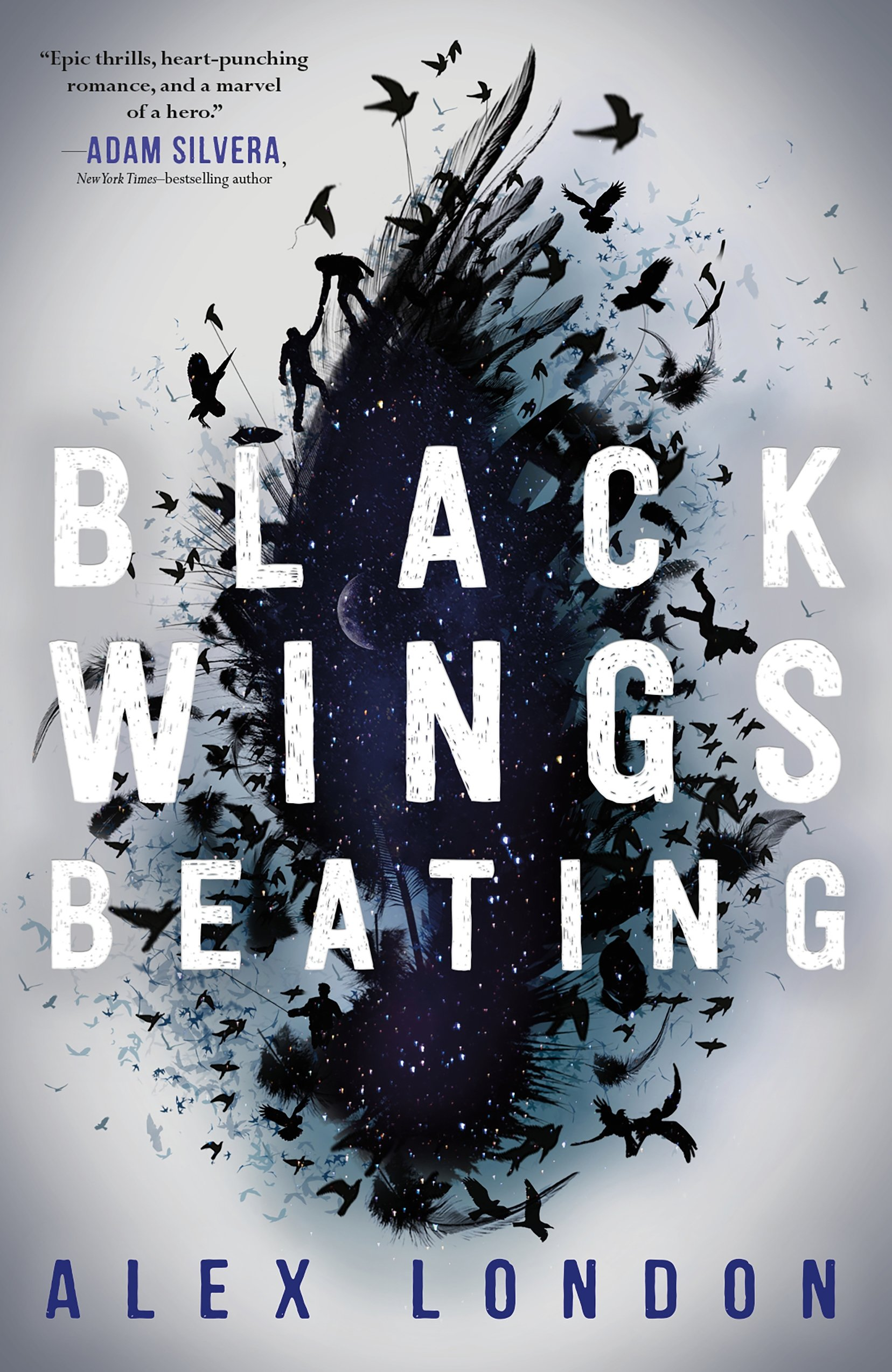 Image result for black wings beating