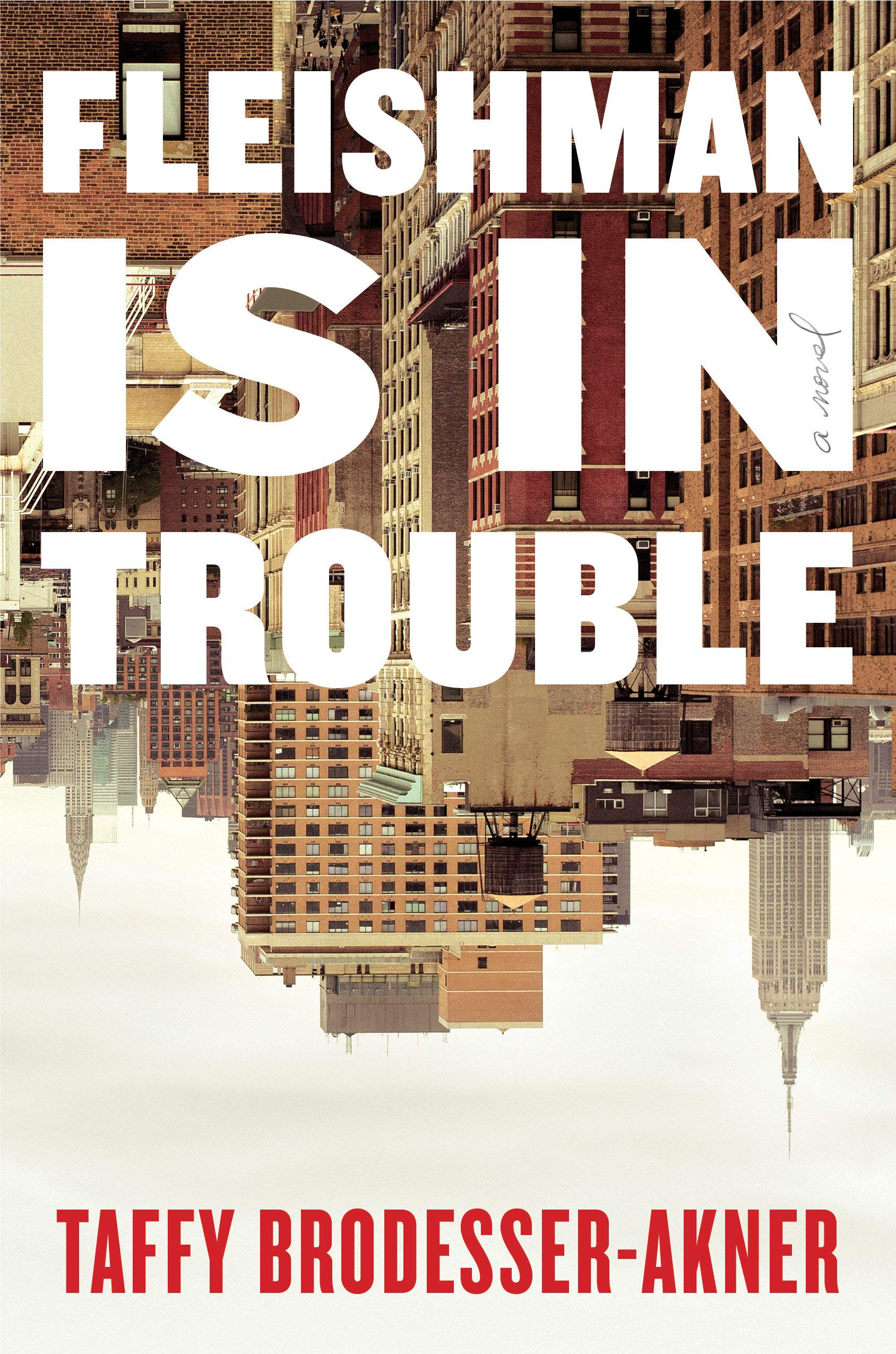 Image result for fleishman is in trouble by taffy brodesser-akner