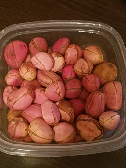 African Fresh Kola Nut 0 5lbs