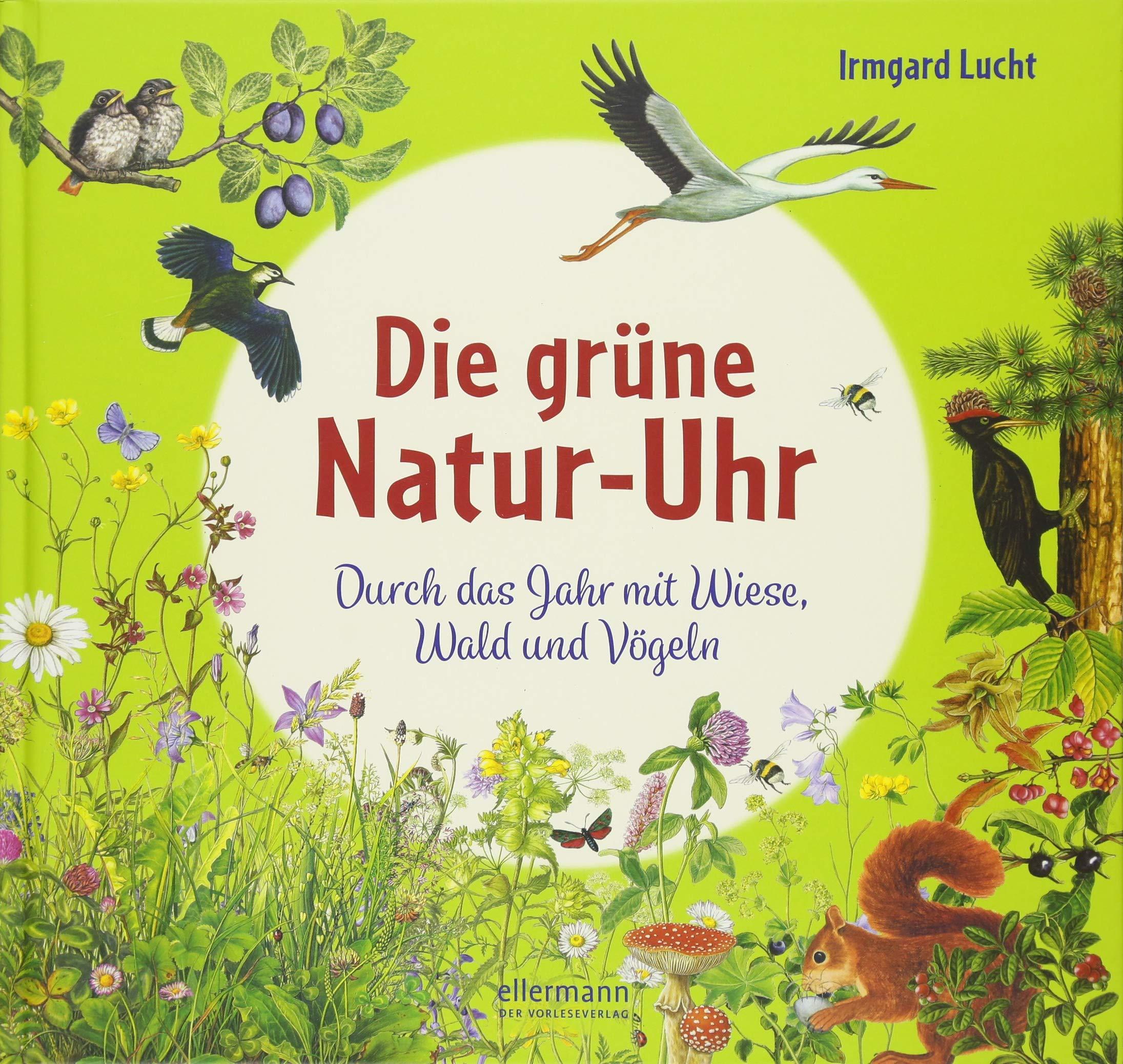 Die grüne Natur-Uhr: Durch das Jahr mit Wiese, Wald und Vögeln ...