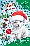Holly Santapaws Saves Christmas: Special 5 (Magic Animal Friends) (English Edition)