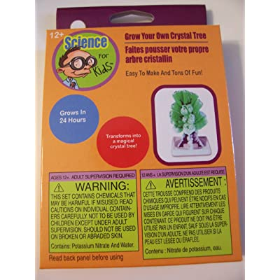 Science for Kids Thinking Cap Activities ~ Grow Your Own Crystal Tree (Ages 12+): Toys & Games