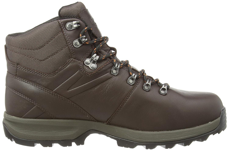 Berghaus Explorer Ridge Plus GTX, Herren Trekking- Trekking- Trekking- & Wanderschuhe f07d32