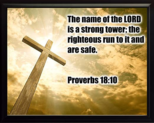 """Amazon.com - Proverbs 18:10 Framed 8x10 Photo """"The Name of the ..."""